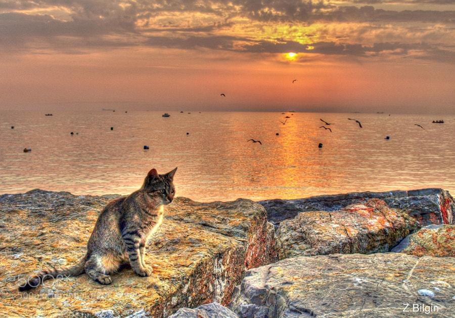 Photograph the sun sets.....  by Zeki Bilgin on 500px