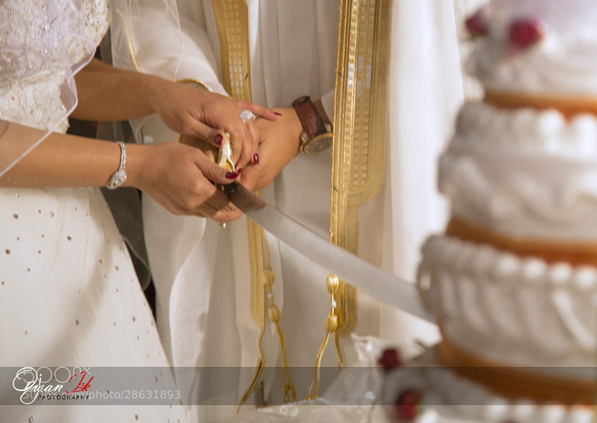 Photograph cutting the Cake by Orjwan Isk on 500px