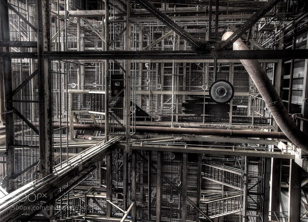 Photograph Hearn by Sean Galbraith on 500px