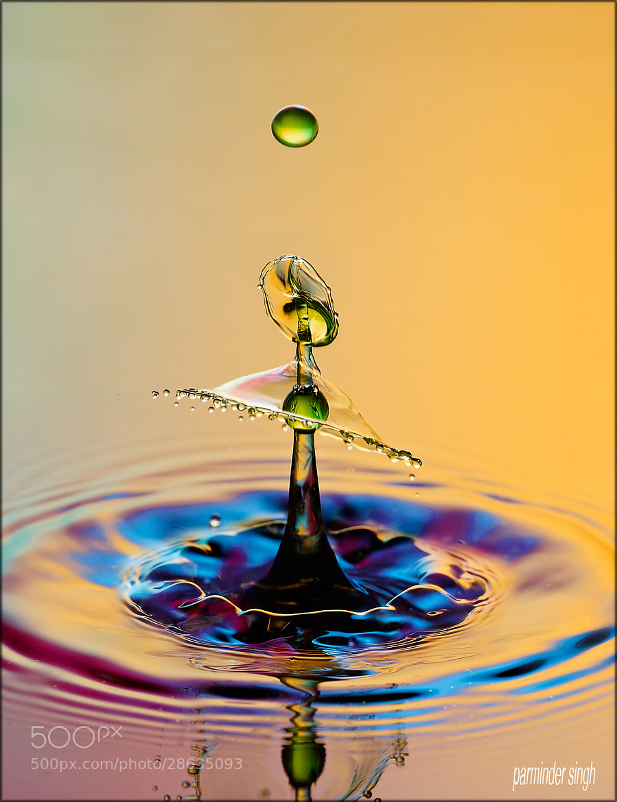 Photograph water drop by parminder singh on 500px