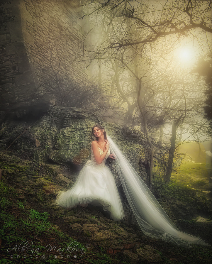 Photograph Bride in the Forest by Albena Markova on 500px