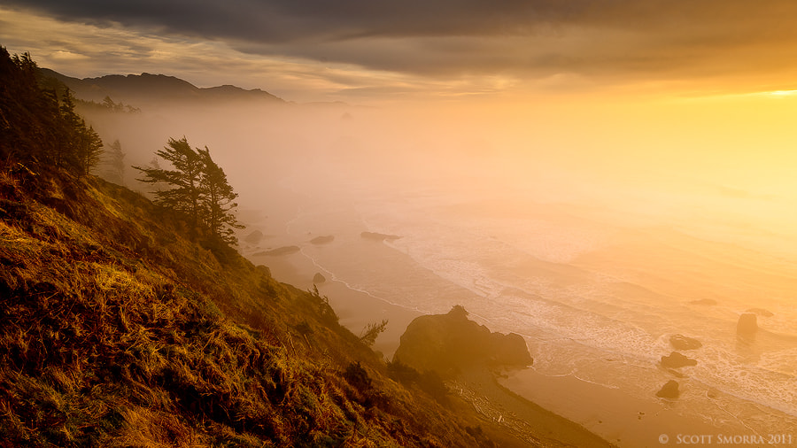 Photograph Coastal Dream by Scott  Smorra on 500px