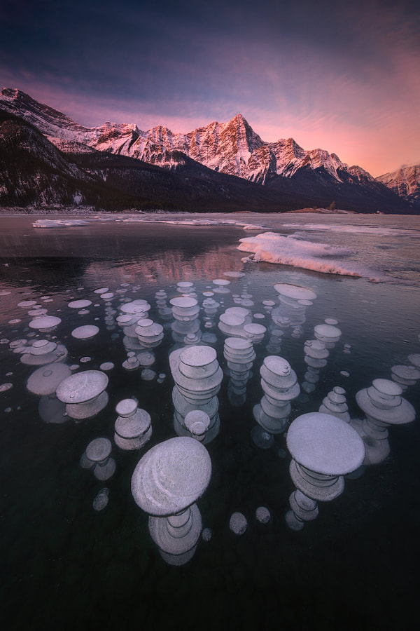 ???? - Ice Bubbles In the Morning by ??  on 500px.com