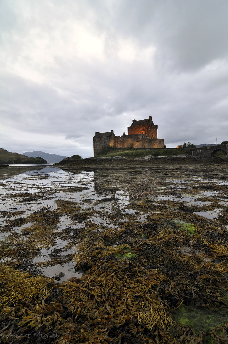 Photograph Eilean Donan by Albert Miguel on 500px