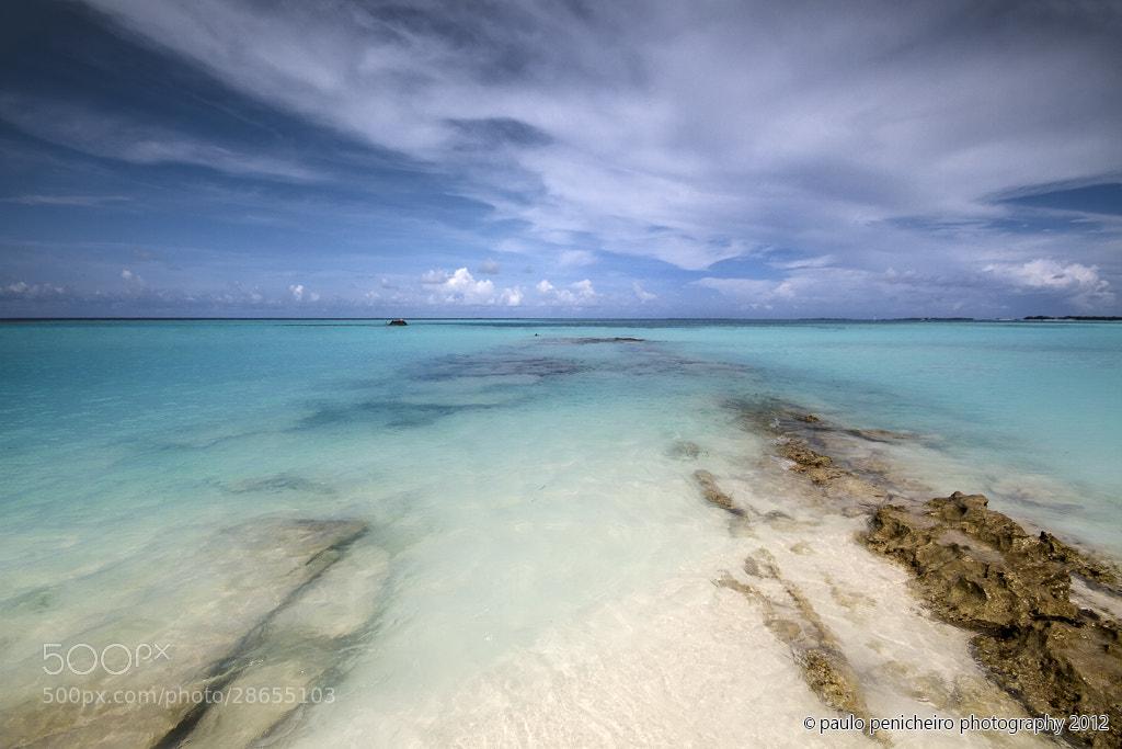 Photograph Dream Come True by Paulo Penicheiro on 500px