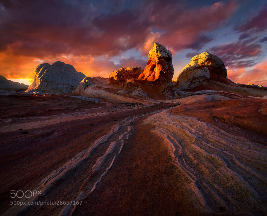 Photograph Red Light by Marc  Adamus on 500px