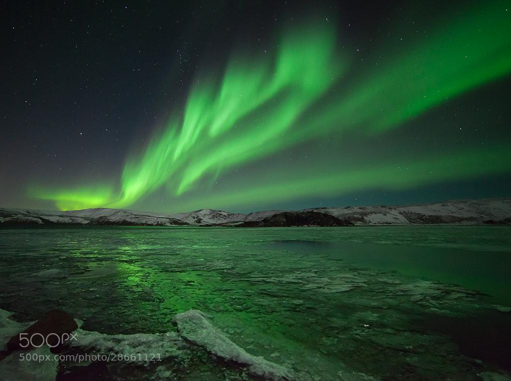 Photograph Green ballet  by Gunnlaugur  Valsson on 500px