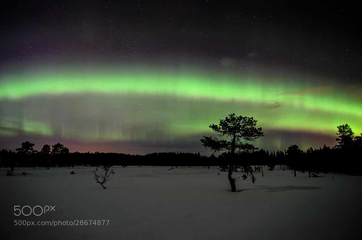Photograph Aurora Landscape by Kolbein Svensson on 500px