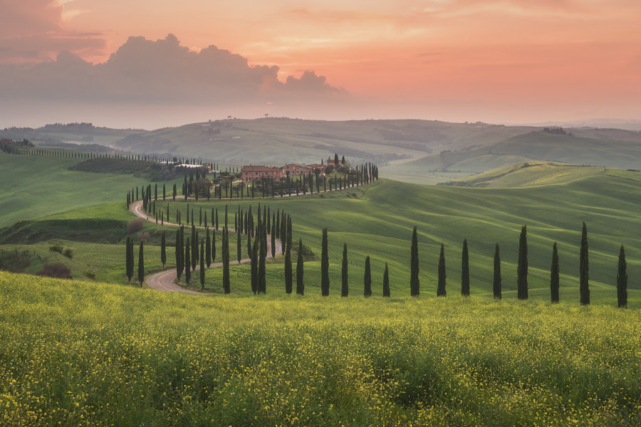 The Rolling Hills of Tuscany by Iurie Belegurschi on 500px.com