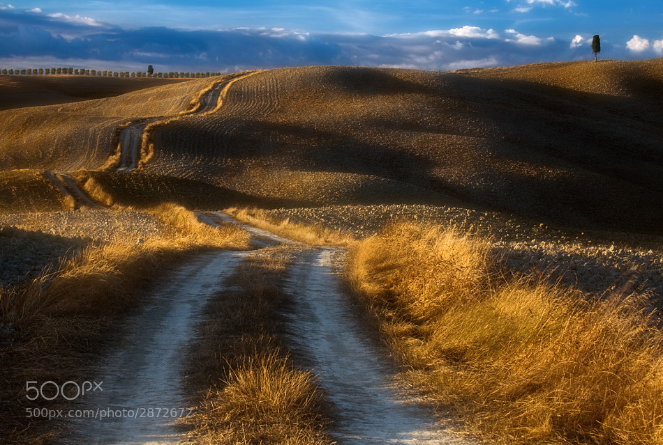 Photograph Road... by Krzysztof Browko on 500px