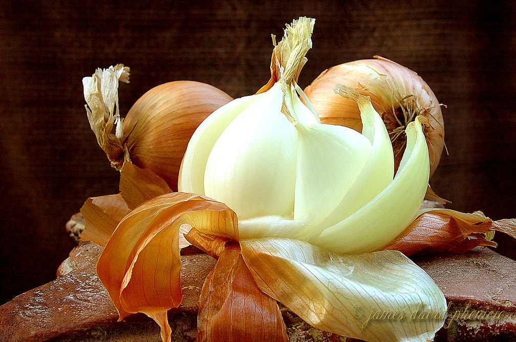 Photograph Three Onions by James David Phenicie on 500px