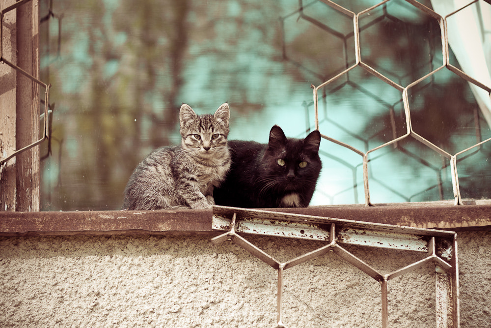 Photograph Mom and son by Alisa Kettu on 500px
