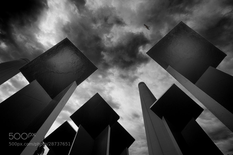 Photograph Lecterns to Heaven by Hani Latif Zaloum on 500px