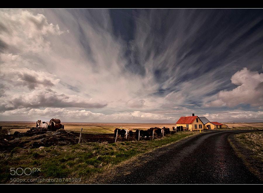 Photograph Yellow House by Þorsteinn H Ingibergsson on 500px
