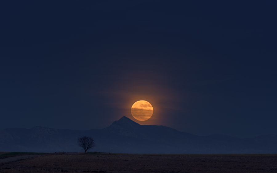 Under the Moon Lovestory by Daniel  Eito on 500px.com