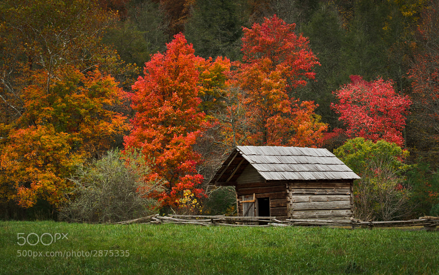 Photograph Old Toms Cabin by Wes Head on 500px