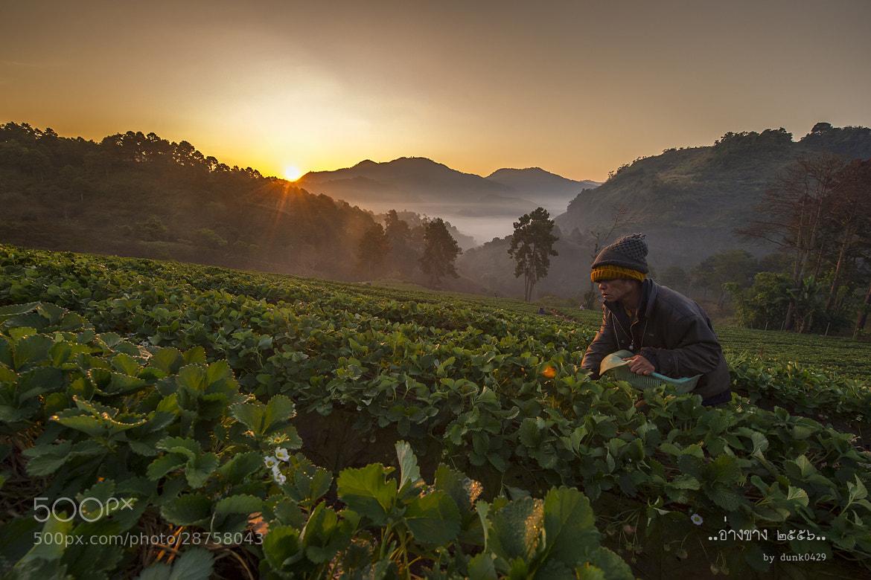 Photograph Angkhang #1 by nitinai naksuwan on 500px