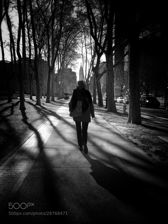 Photograph Farewell, stranger by Dana Rose on 500px