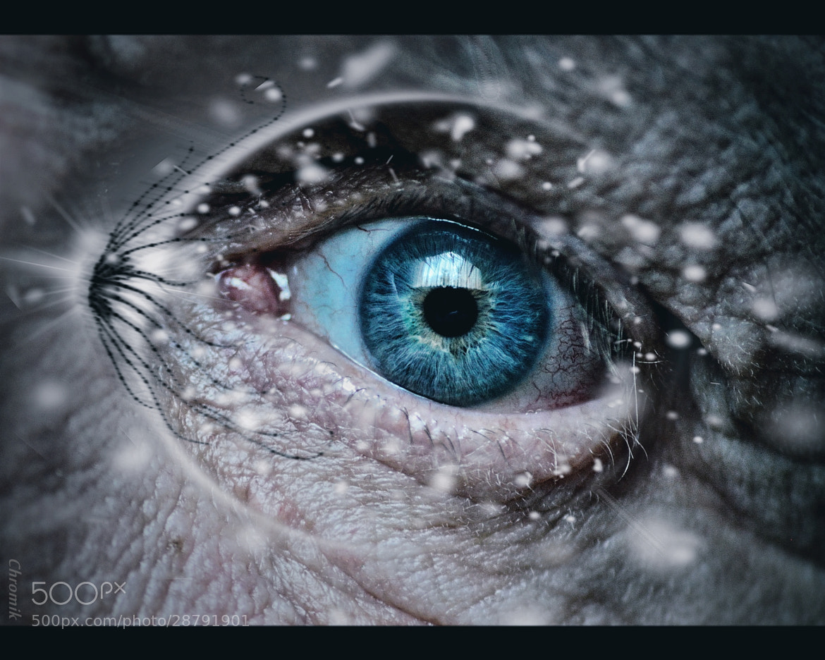 Photograph Eye without words by dietmar Chromik on 500px