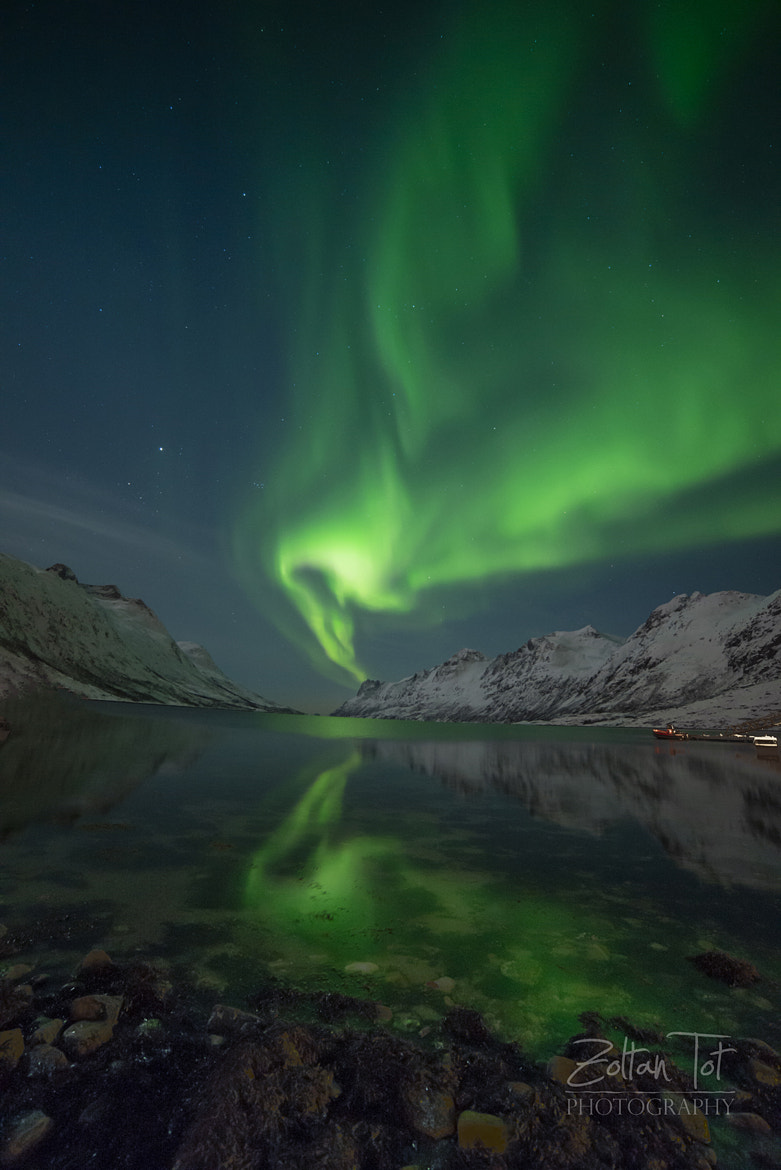Photograph Aurora by Zoltan Tot on 500px