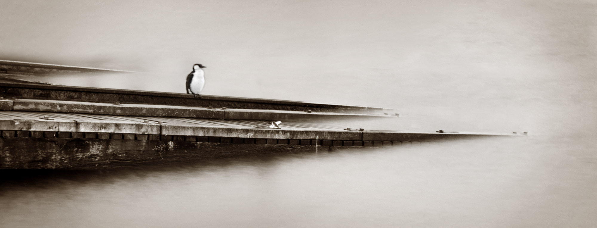 Photograph boat launch by Nathan Oxley on 500px