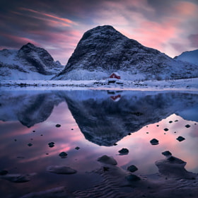 Norwegian King by Max Rive on 500px.com