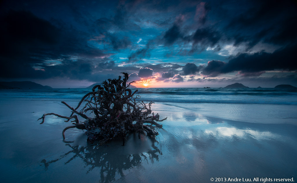 Photograph Medusa Drift (Reflection) by Andre Luu on 500px