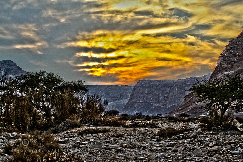 Photograph Judean Desert by  Michal De-porto on 500px