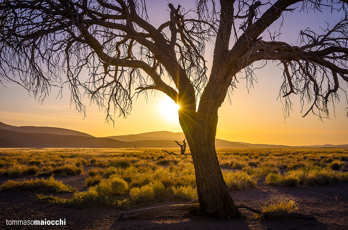 Photograph Sunset over Namib by Tommaso Maiocchi on 500px