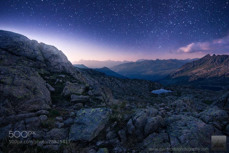 Photograph Alpine Firmament by David Richter on 500px