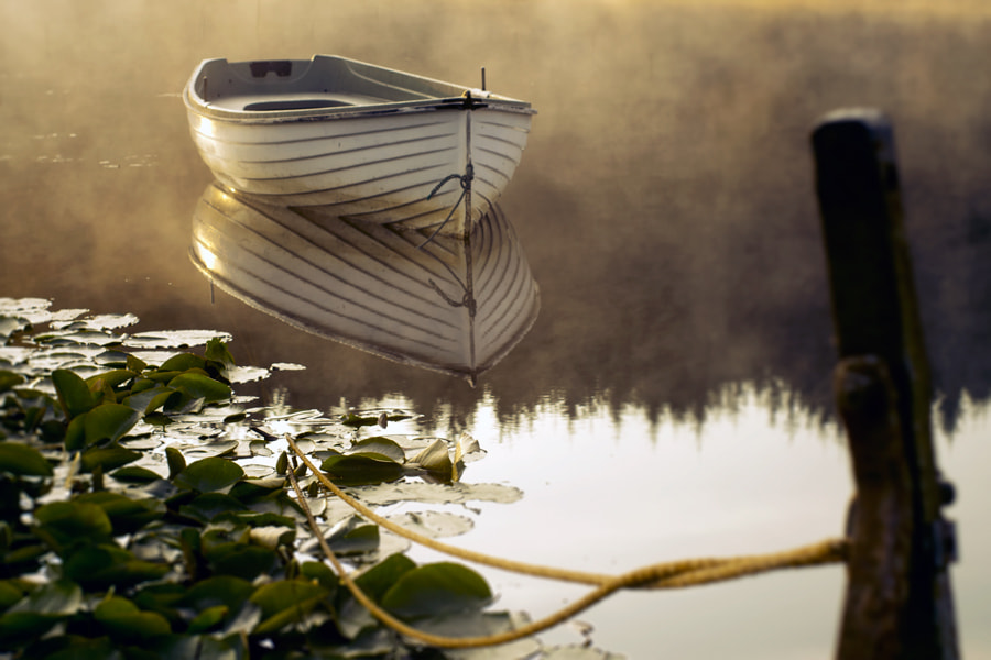 Photograph Sun Kiss'd by David Mould on 500px