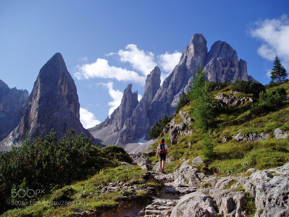 Photograph Summer - Hiking in San Candido by Robert  Leitlhof on 500px