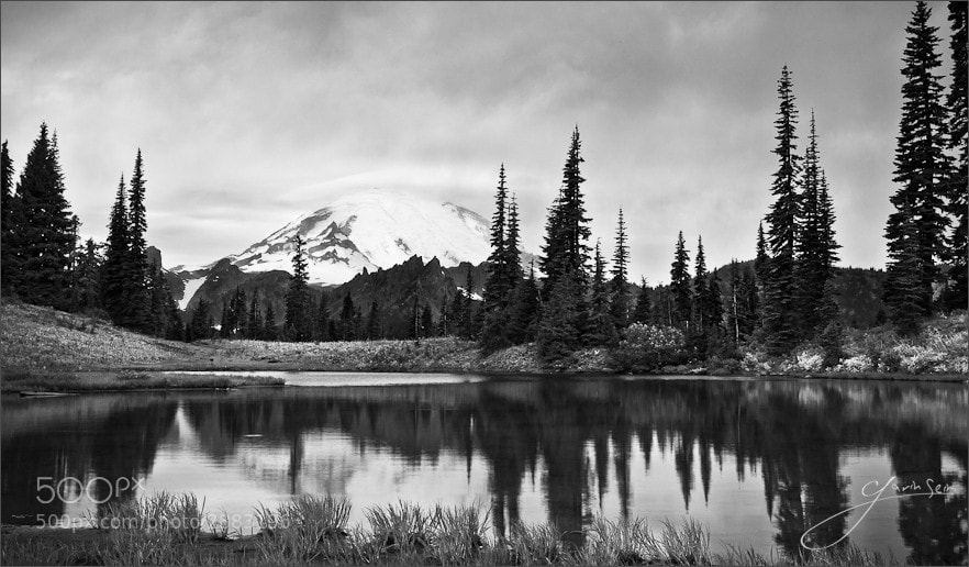 Photograph Song of a Dreary Day – Mount Rainier NP by Gavin Seim on 500px