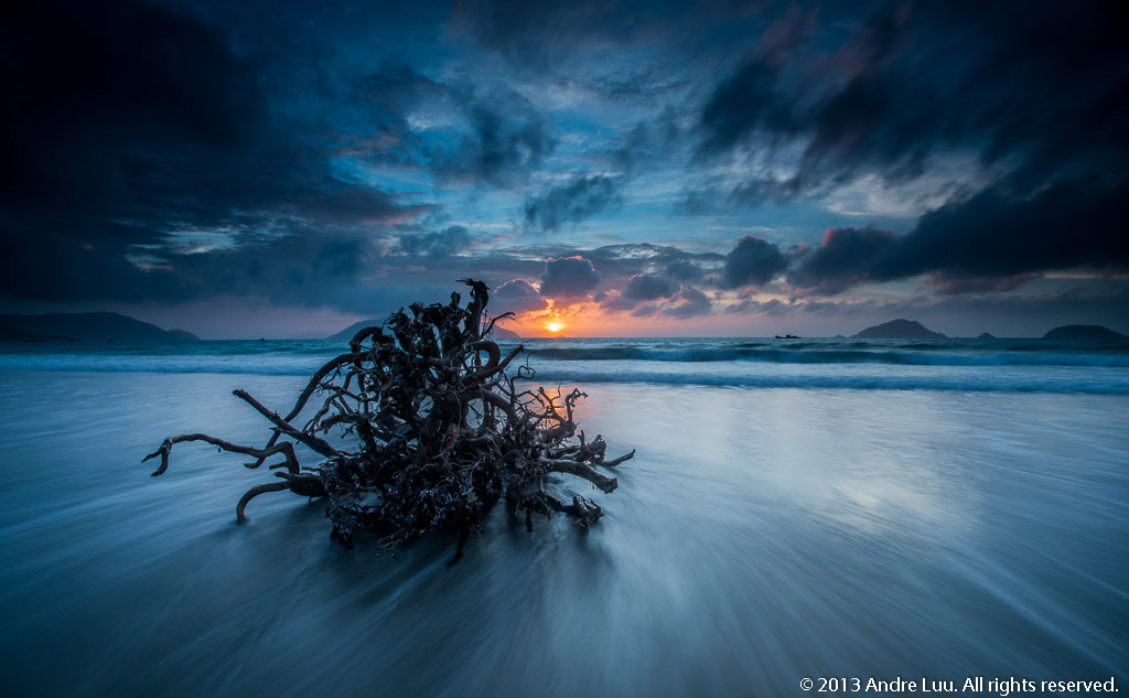 Photograph Medusa Drift (Striated Waves) by Andre Luu on 500px
