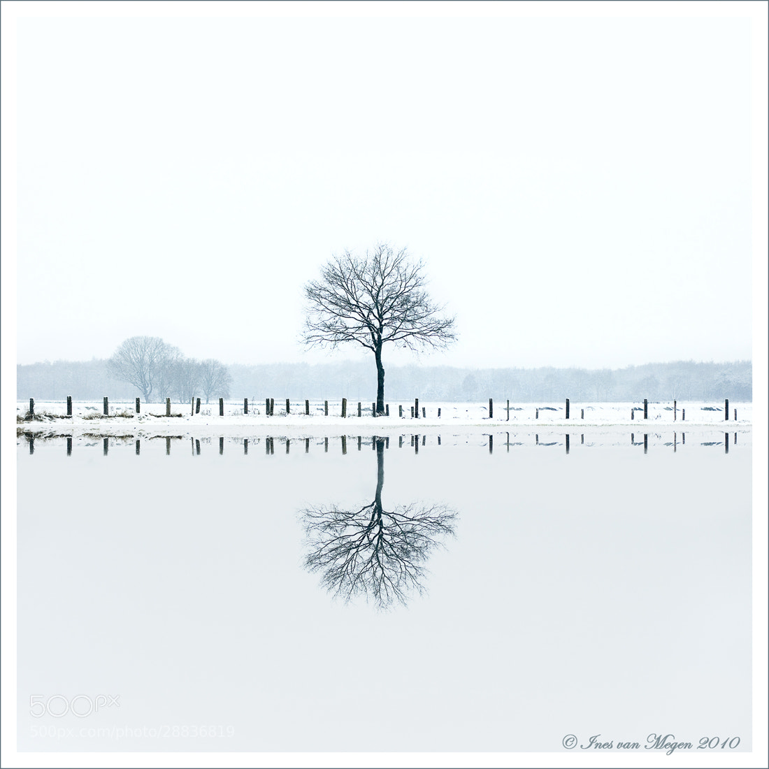 Photograph Apparent world  by Ines van Megen-Thijssen on 500px