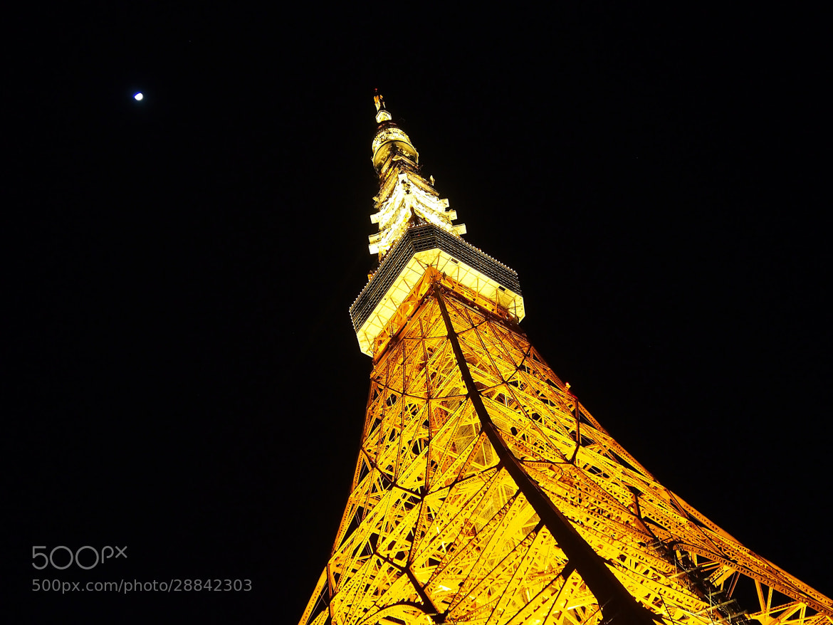 Photograph TOKYO TOWER by THE TOKYO FOREST on 500px