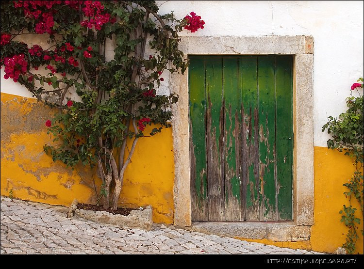 Photograph Green Door by Tiago Estima on 500px