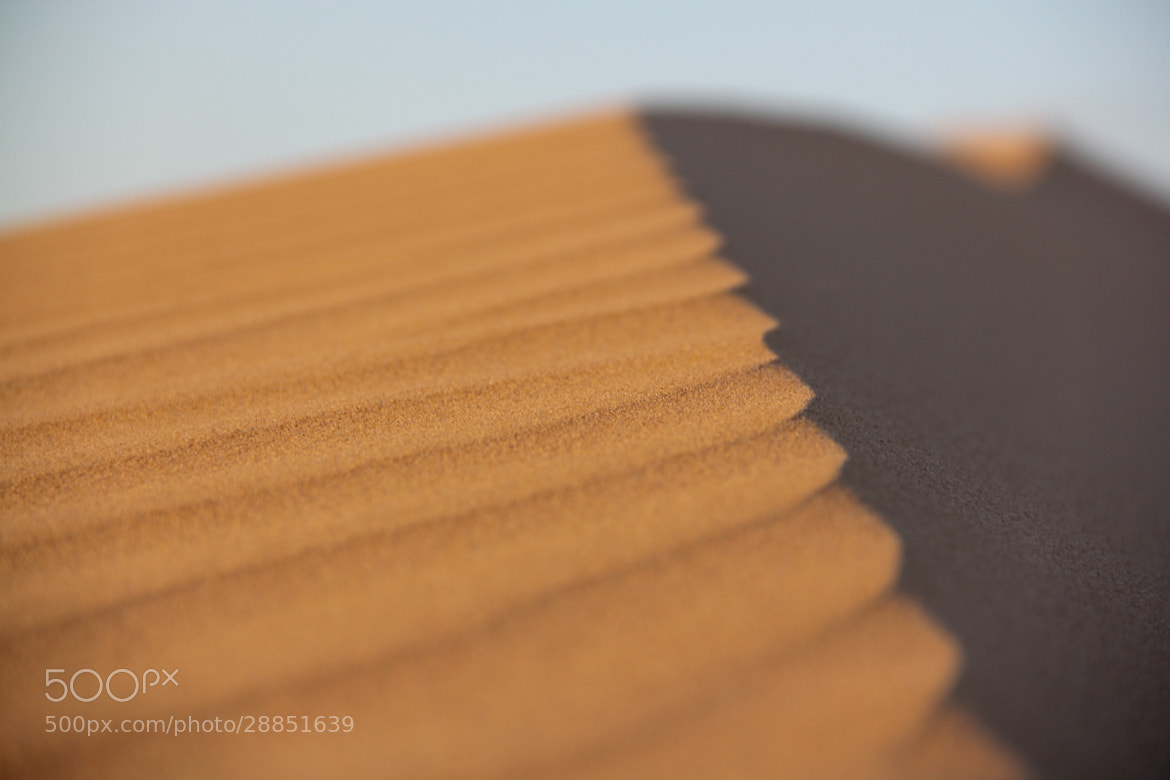 Photograph Sand by Ahmed Alhashmi on 500px
