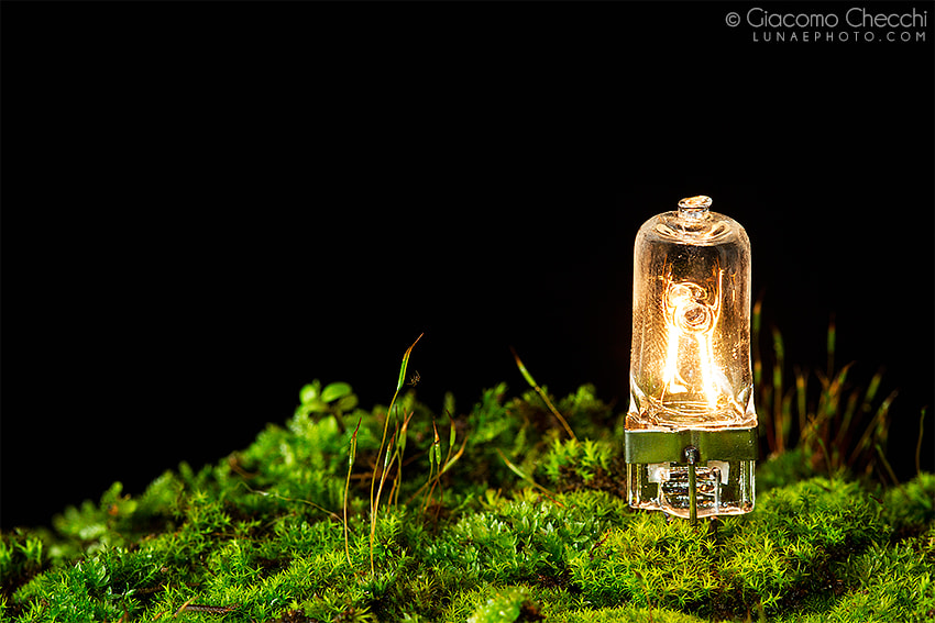 Photograph Earth power - Earth Hour project by Giacomo Checchi on 500px