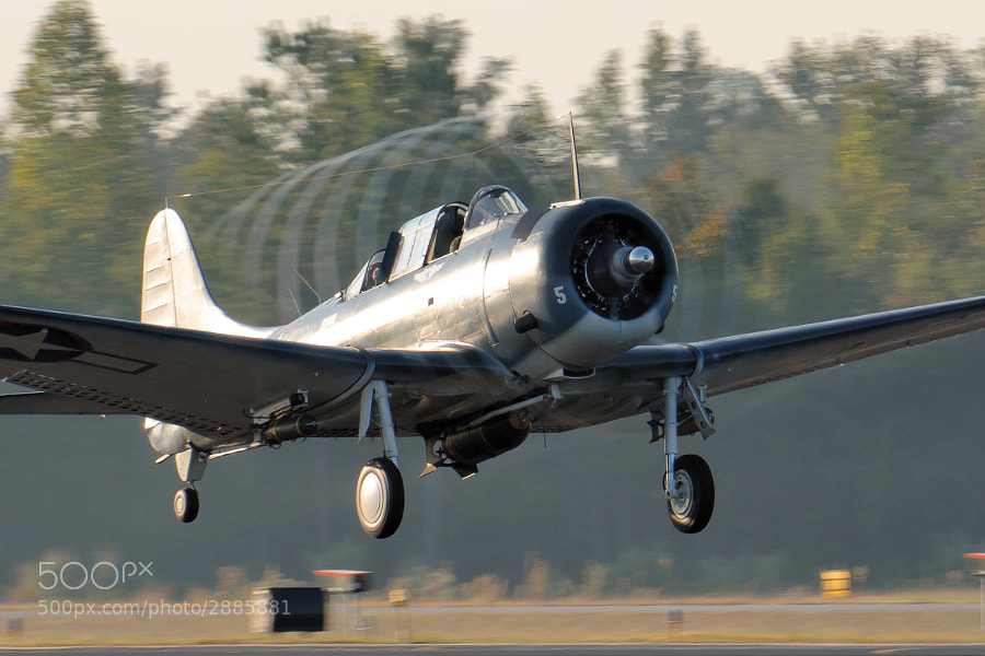 "High humidity combined with ""Golden  Hour"" light help create the dramatic condensation trail as this very rare SBD-5 Dauntless takes off. 2011 Great Georgia Airshow"