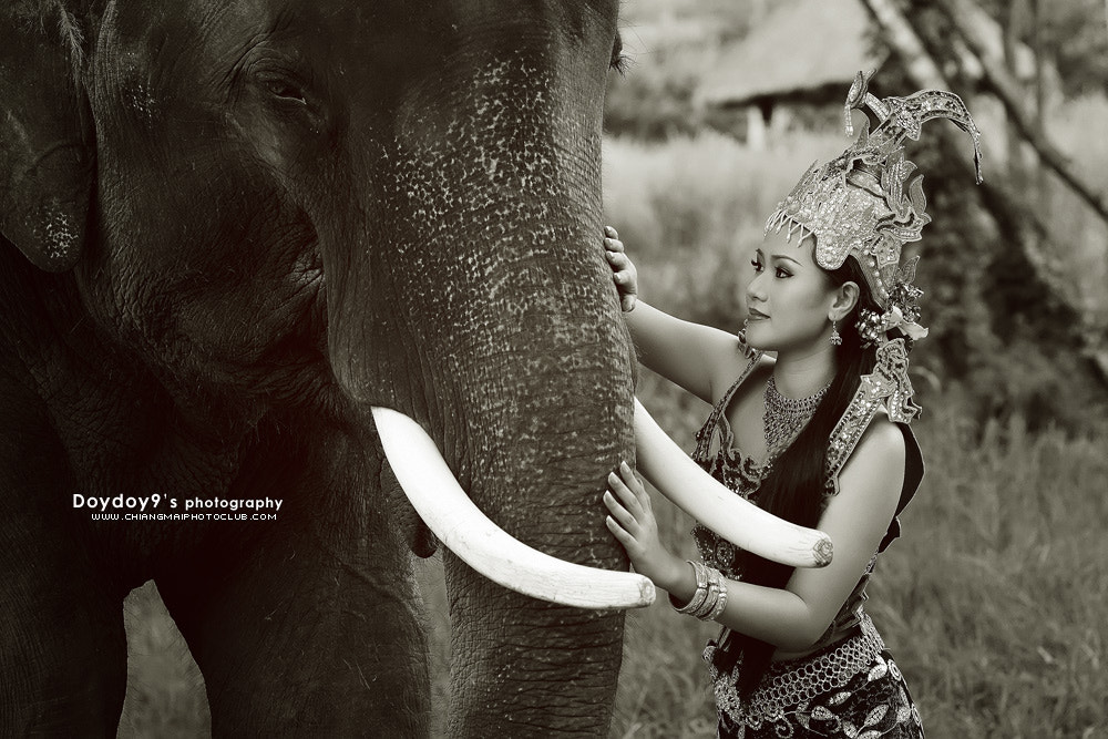 Photograph Angel with Elephant by Doy Pdamobiz on 500px