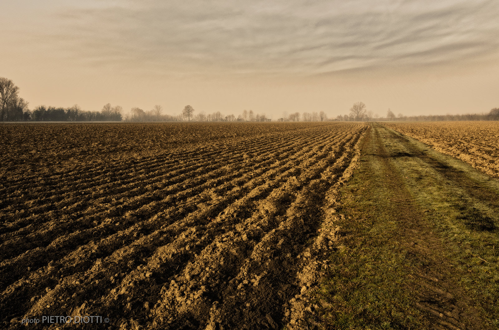 Photograph Plain 3, winter, Cremona, Italy. by Pietro Diotti on 500px
