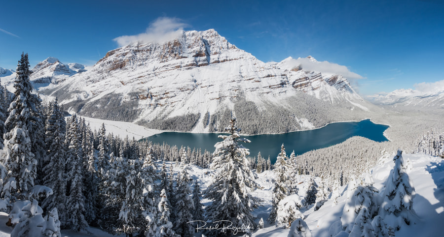 Peyto Lake in Banff National Park - Canada by Rafal Różalski on 500px.com