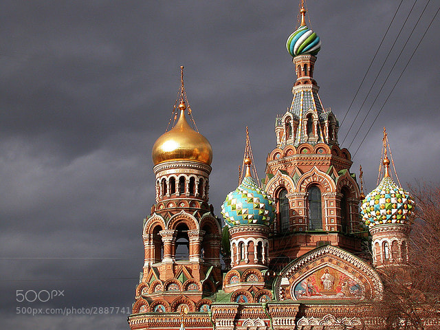 Photograph Church on Spilt Blood in St. Petersburg by Alexandra Kosolapova on 500px