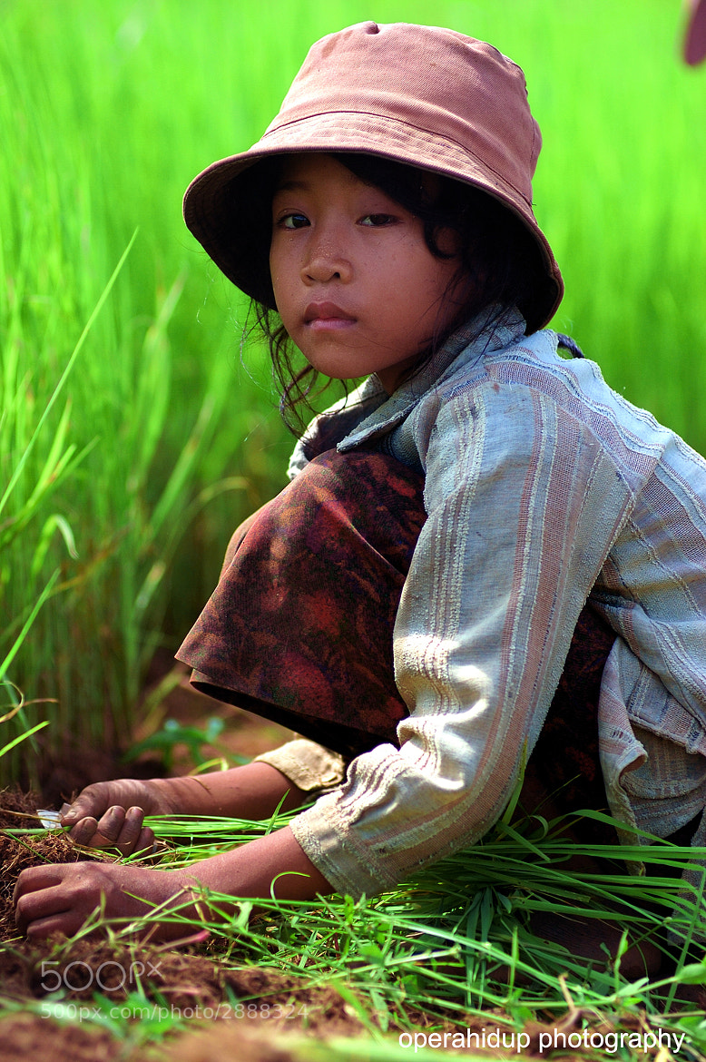 Photograph YOUNG FARMER by OPERAHIDUP PHOTOGRAPHY on 500px