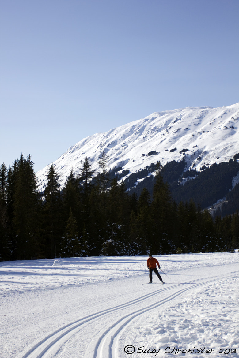 Photograph Cross Country Skier by Suzy Chronister on 500px