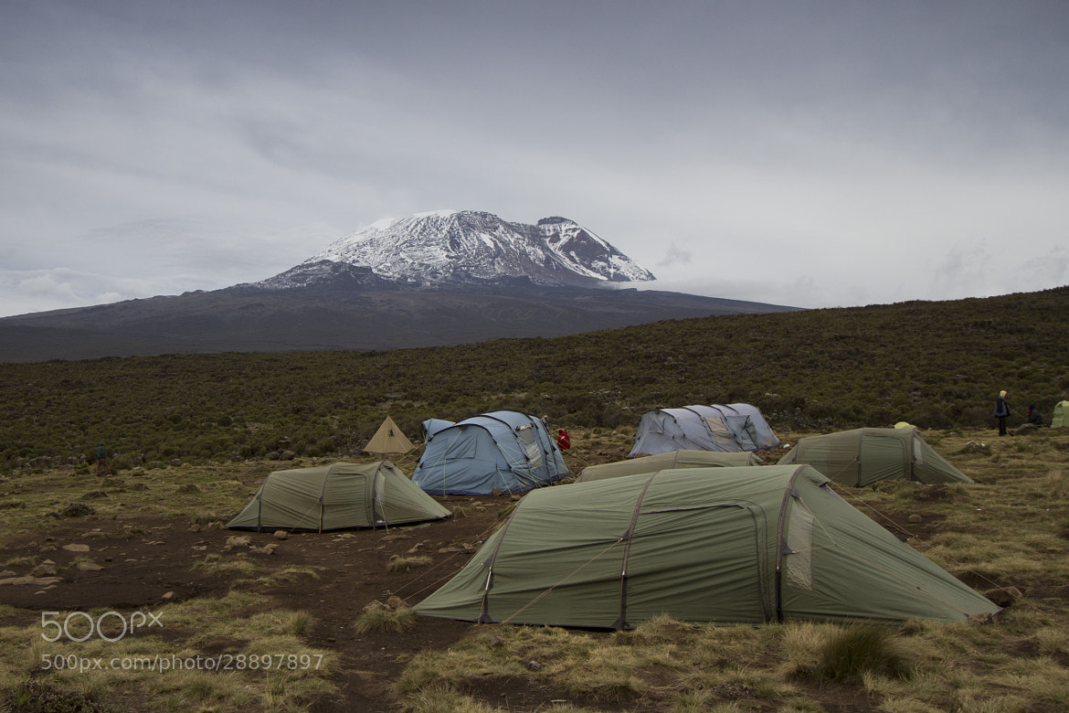 Photograph Mt Kilimanjaro camp by Shannon Ley on 500px