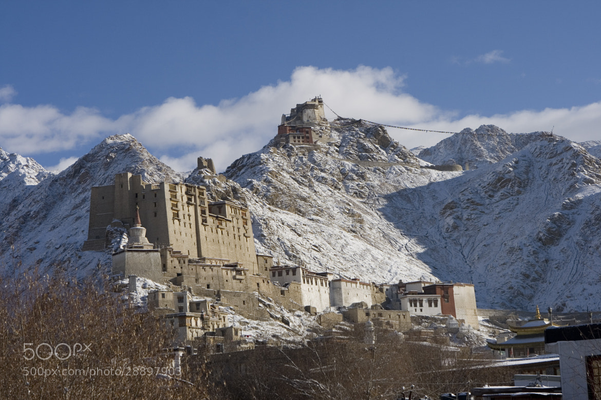 Photograph Leh Palace by Shannon Ley on 500px