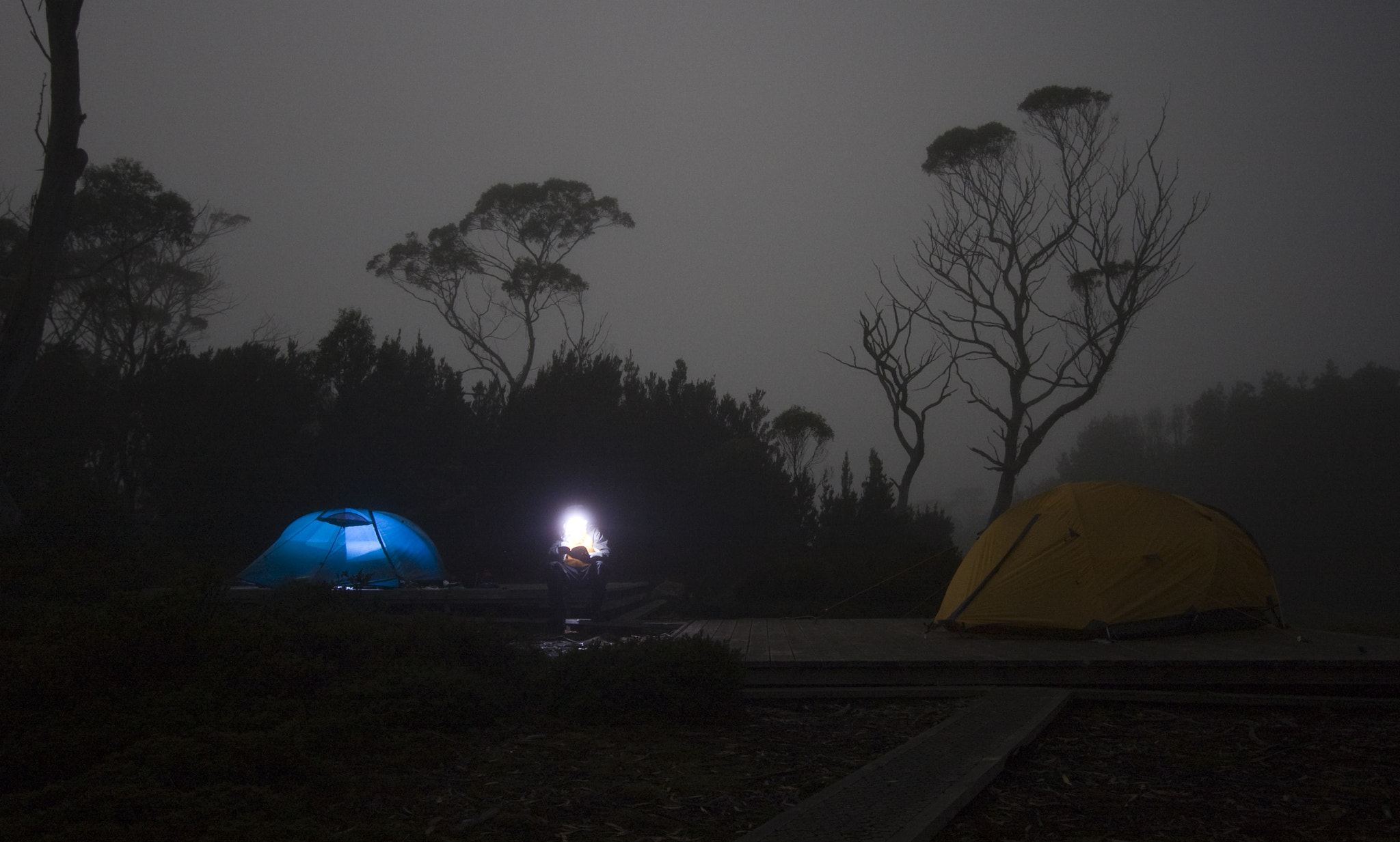 Photograph Overland track by night by Shannon Ley on 500px