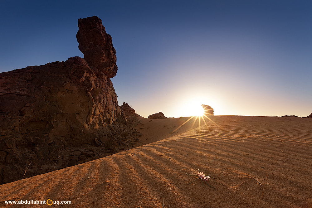 Photograph Curvature by Abdulla Bin Touq on 500px